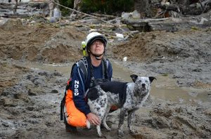 Lisa_Bishop_and_her_dog,_Cody,_with_Northwest_Disaster_Search_Dogs,_watch_as_a_Washington_National_Guard_helicopter_flies_over_the_debris_field_caused_by_the_mudslide_in_Oso,_Wash.,_March_27,_2014_140327-Z-ZZ999-014
